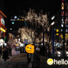 Hongdae – the street of art and indie culture