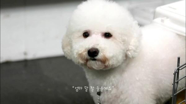 Photo: blog.cjenm.com