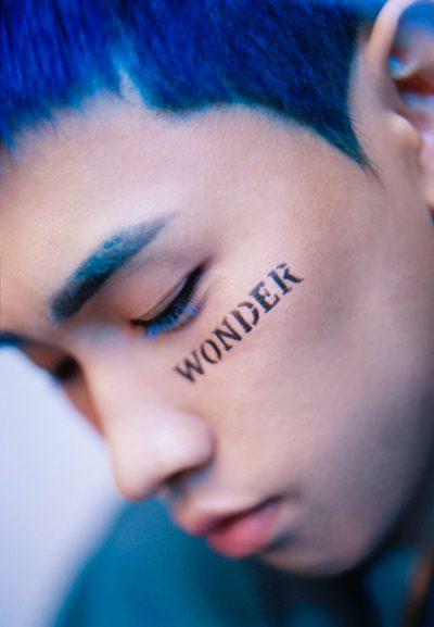 Crush Wonderlost