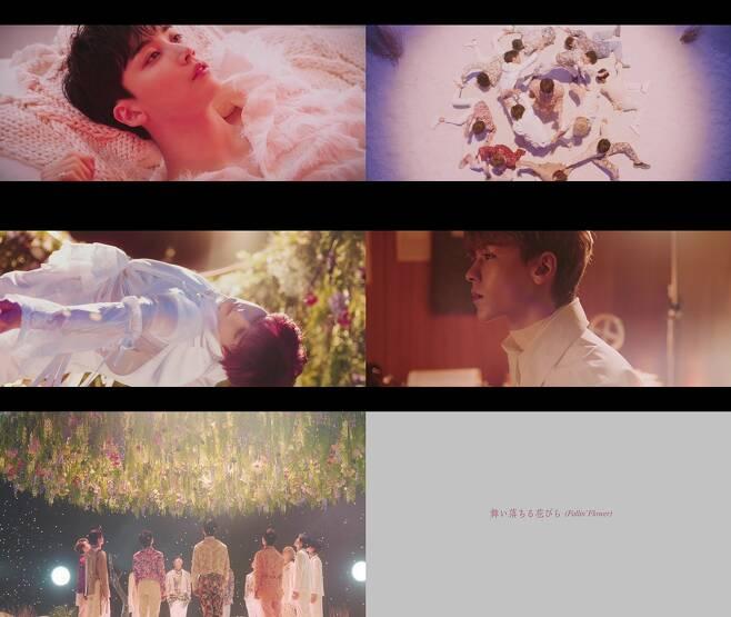 seventeen fallin flower